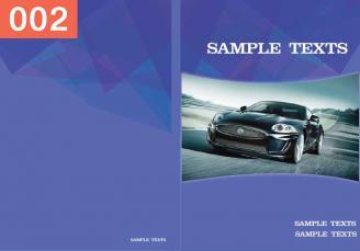 P-Automotive-2